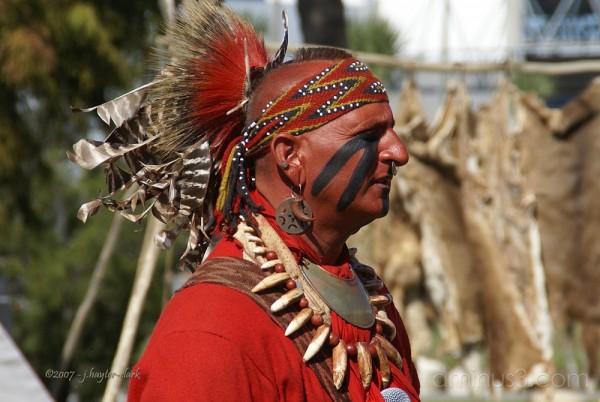 Western Indian Replicator - #3 of 5