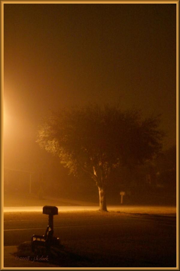 Foggy Night Shot