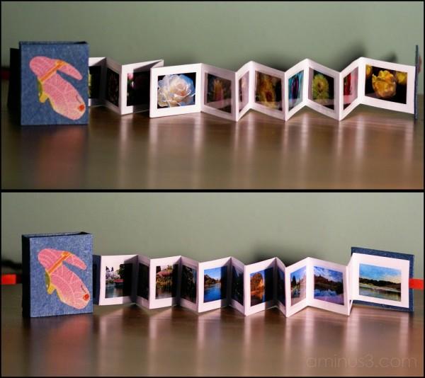 Photo book from Yoshiyuki