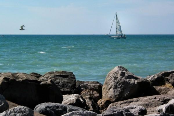 A Sunday Sail in Venice, Florida