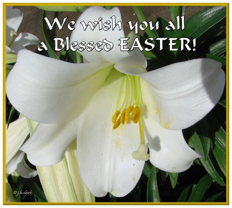 Hallelujah, Christ has Risen!