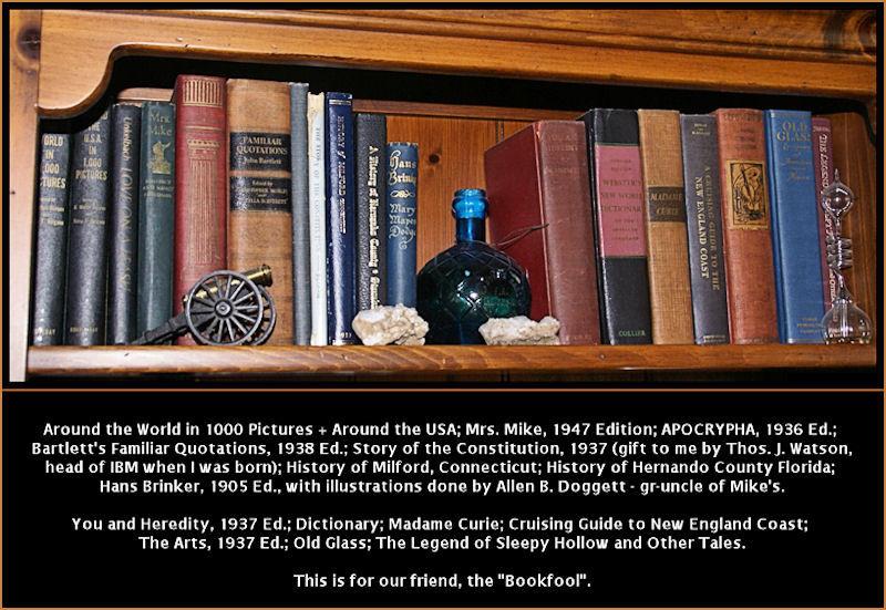 Bookshelf for Bookfool...