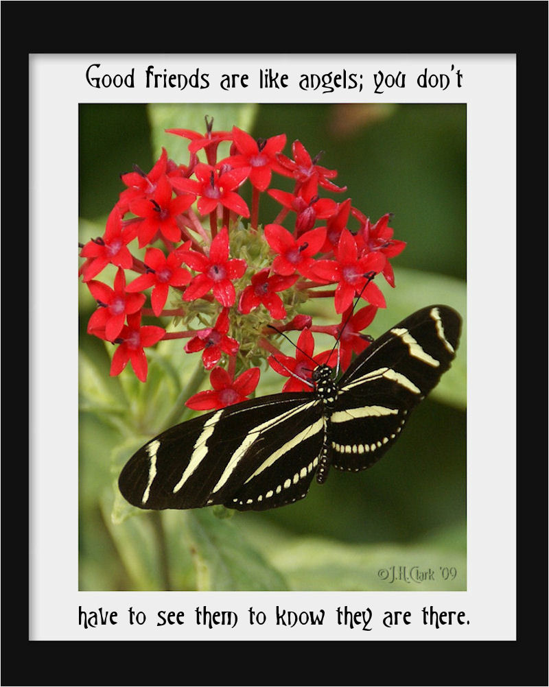 Friends are Angels