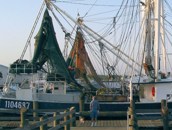 Checking out the Shrimpers...