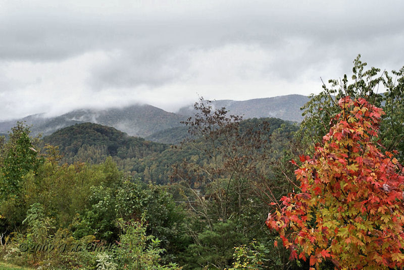 Why we went to the Georgia mountains...