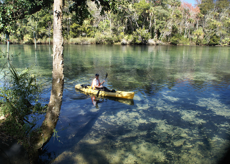 Navigating the Homosassa River