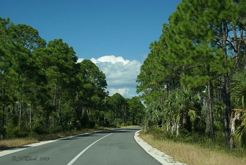 Florida Panhandle in it's natural state...