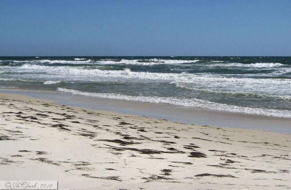 Shore surf...