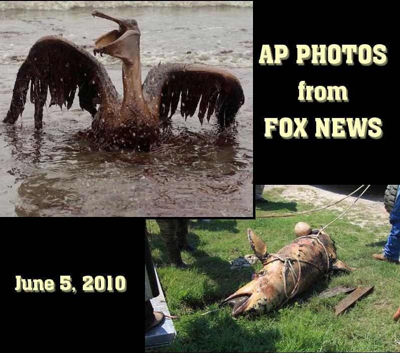 AP Photos from Fox News
