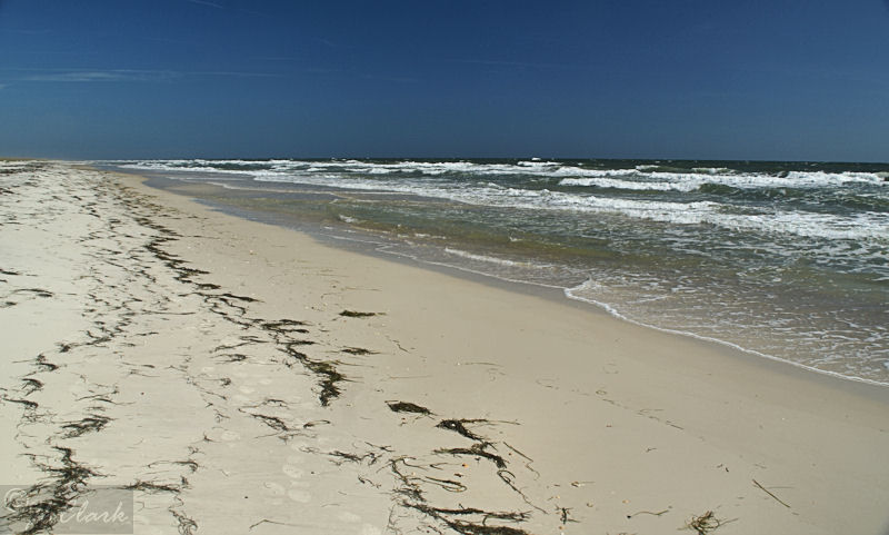 Gulf of Mexico beaches...