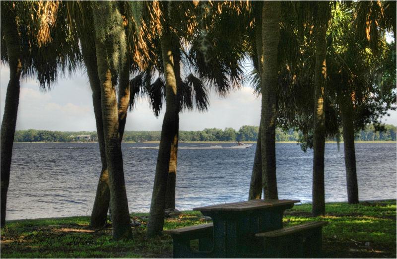 Florida's west coast...