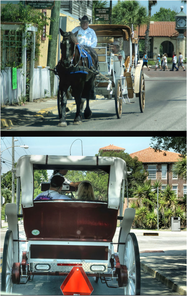 Carriage rides around town...