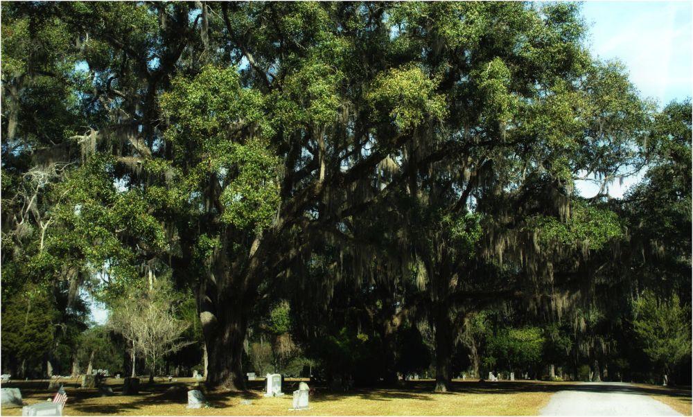 Brooksville Cemetery