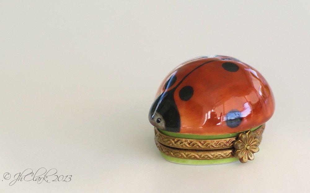 Happy Birthday Ladybug!