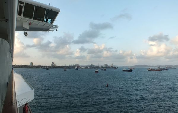 So many ships...