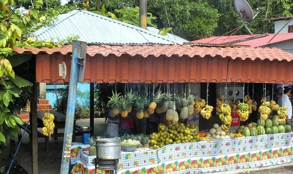 Fruit stand...
