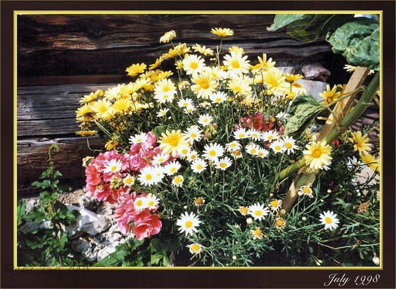 Alpine bouquet...