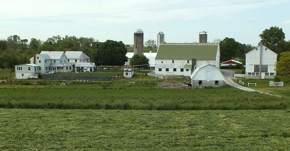 Typical Amish farm...
