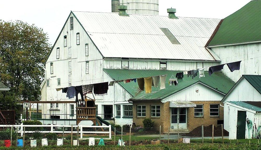 Amish barnyard II...