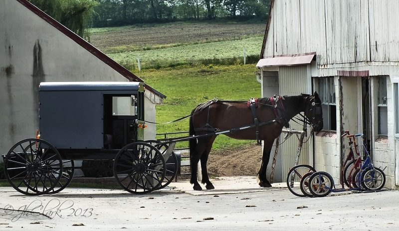 Amish transportion...