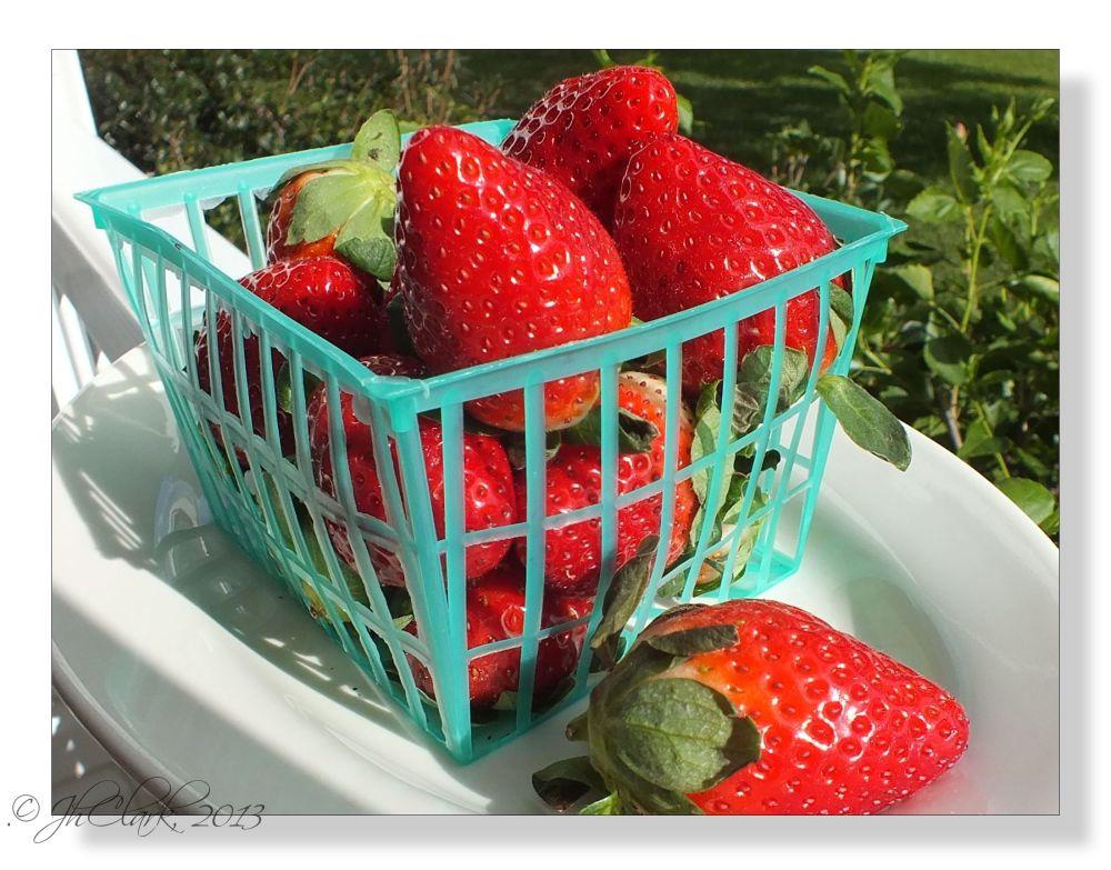 Christmas Strawberries...
