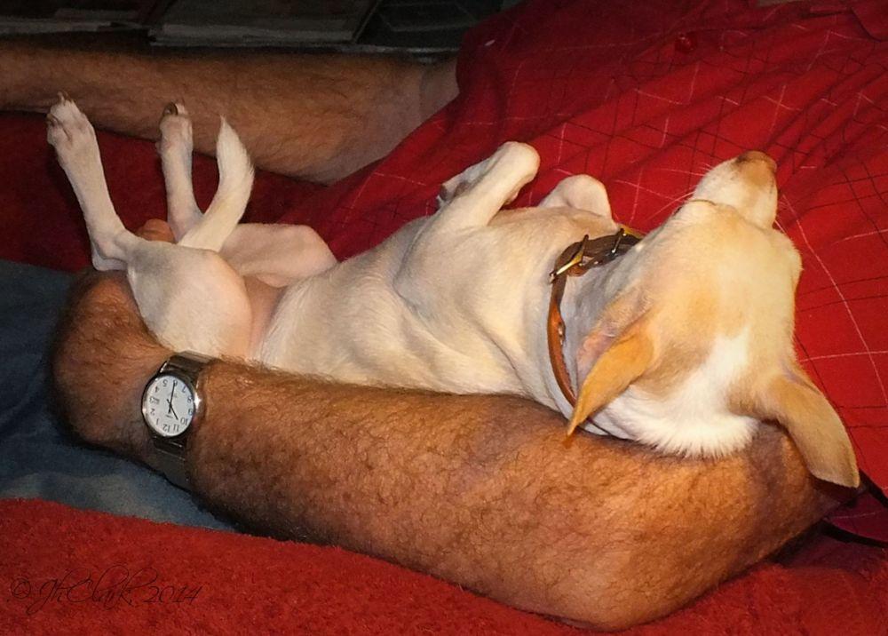 Lazybones...