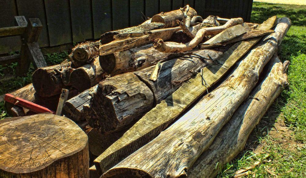 Woodworker's delight...