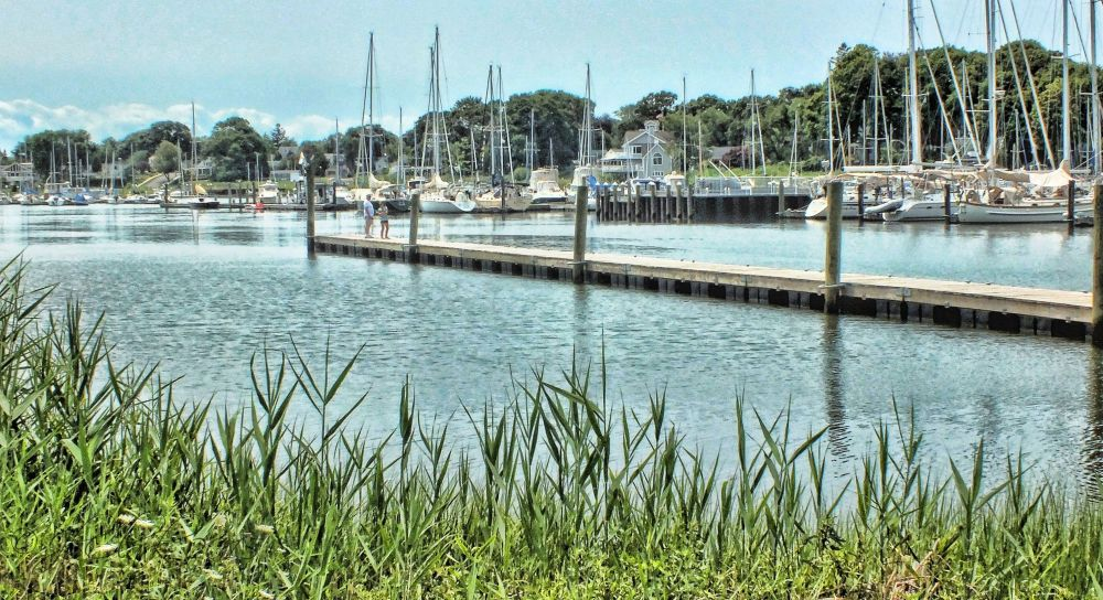 Another harbor view...