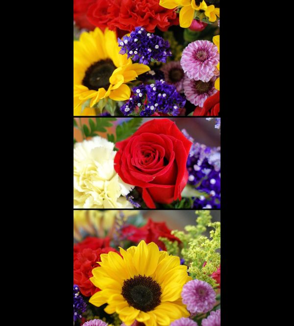 Floral triptych I