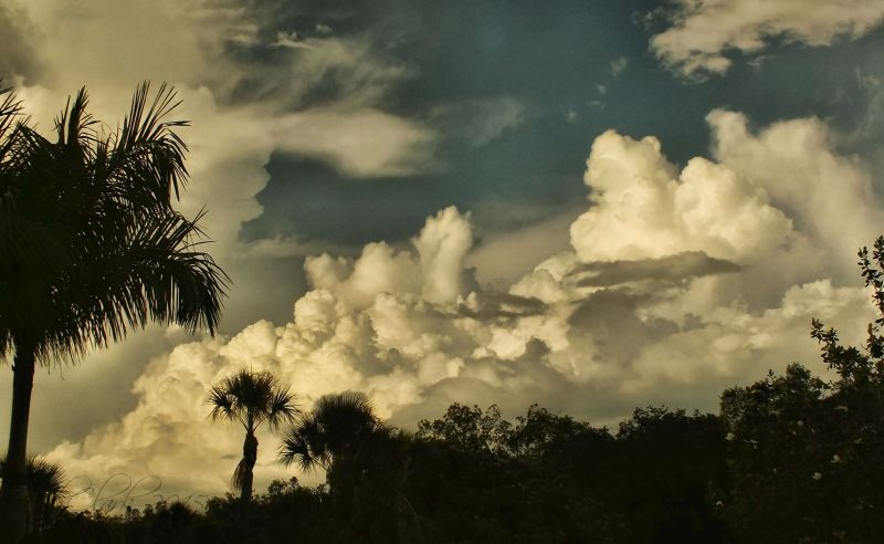 Building clouds...