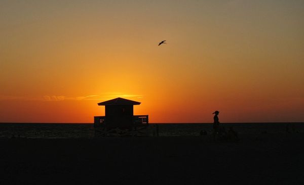 Venice beach sunset 1/3