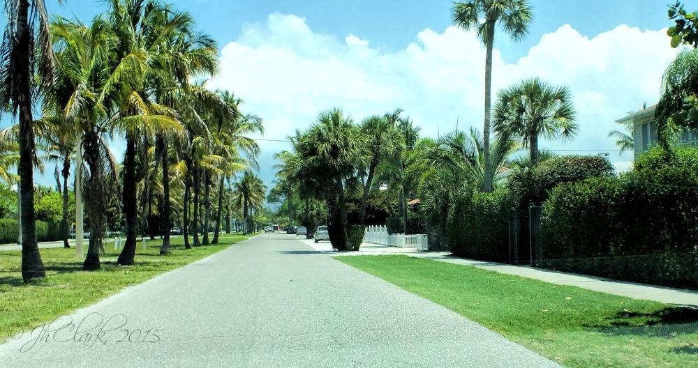 Palm-lined in Boca Grande, FL