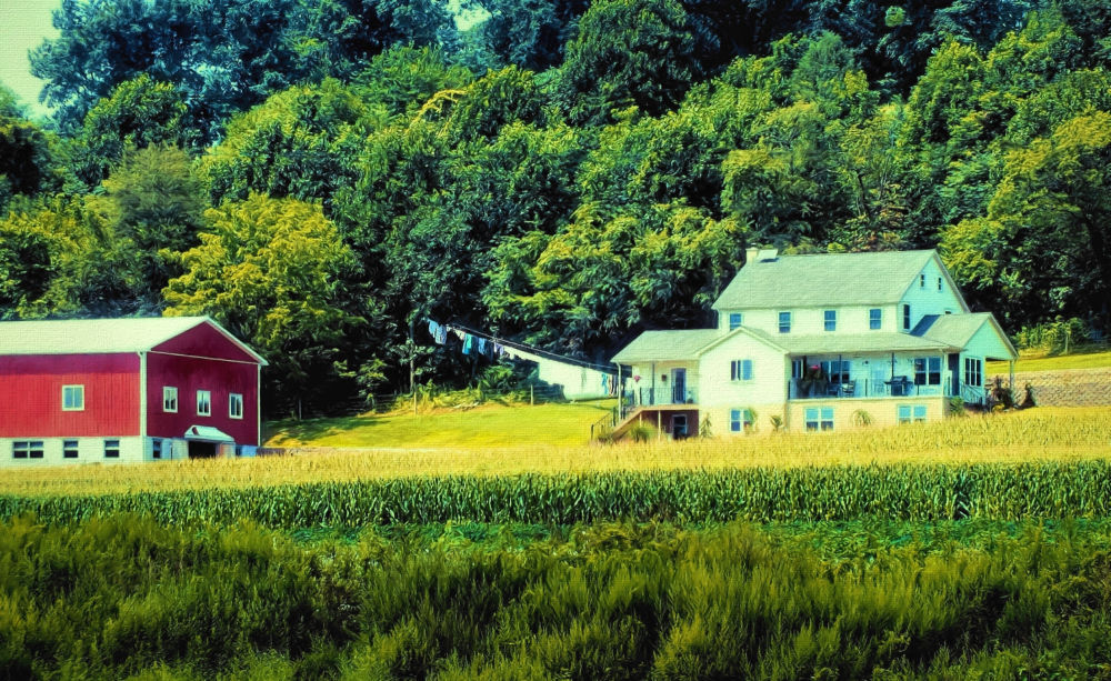 Amish country painting...
