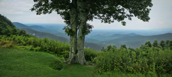 View from the Skyline Drive...