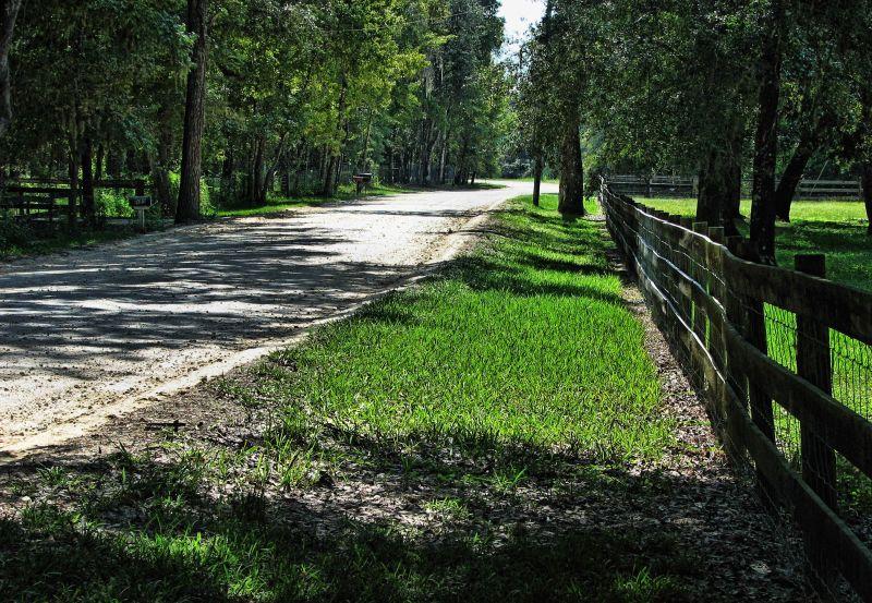 A road less traveled...