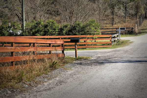 Brooksville country lane...
