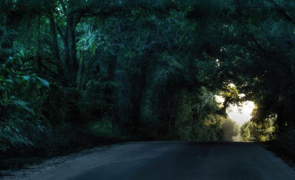 Tunnel of light...