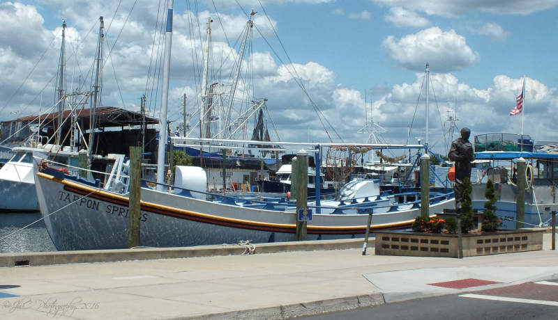 The beauty of Tarpon Springs...