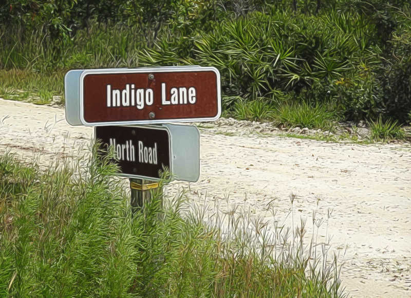 Guess we were on Indigo...