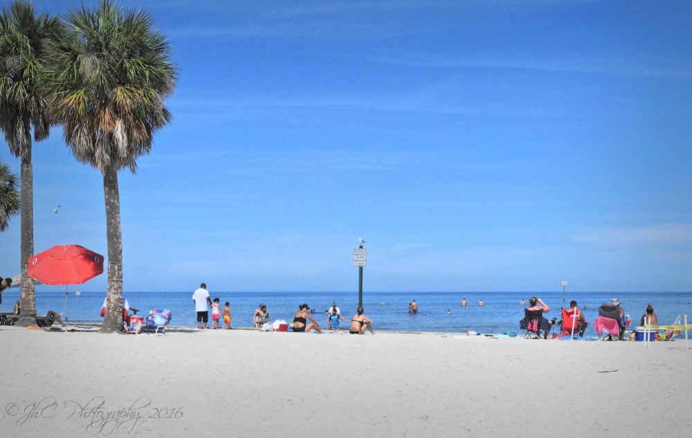 The beach @ Pine Island...