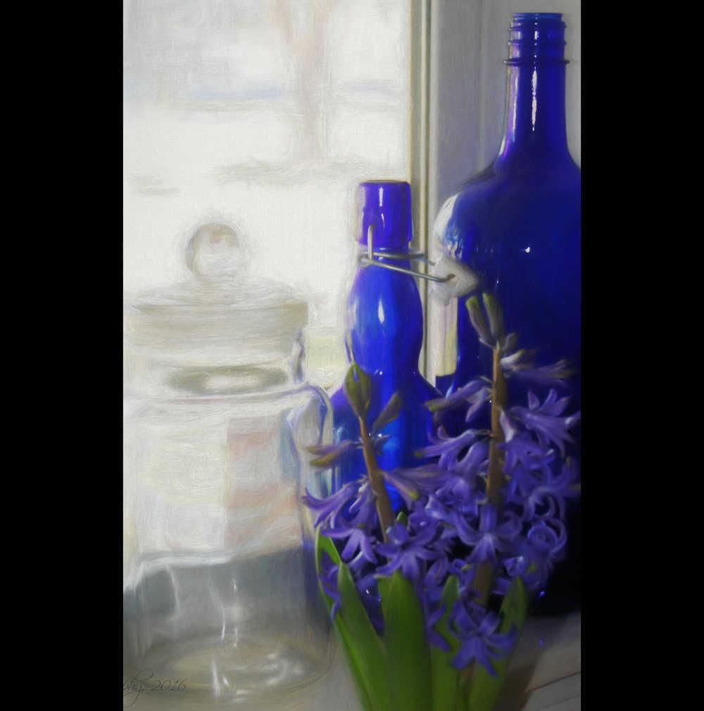 January Hyacinths...