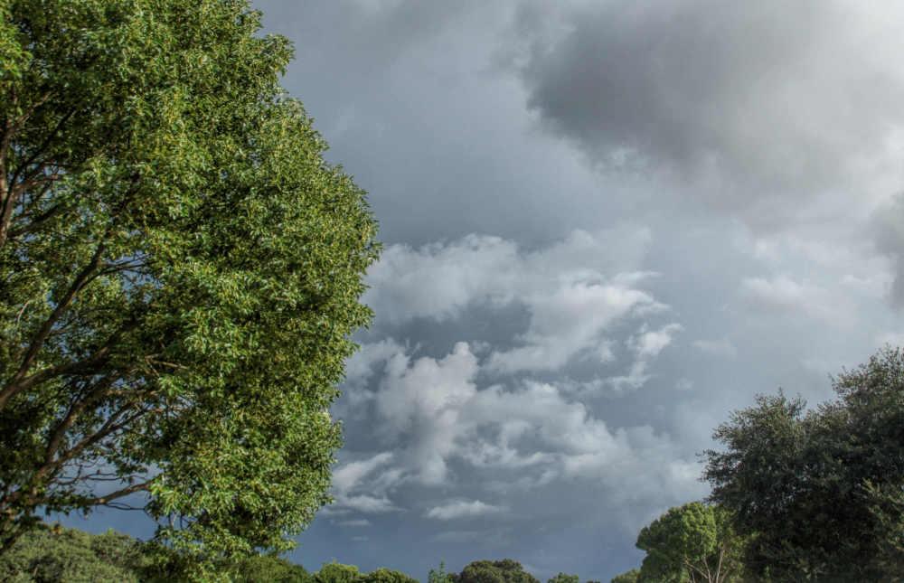 Post hurricane clouds...