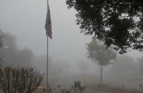 Another foggy morning...
