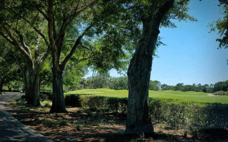 Road in to our villa in Orlando...