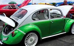 A Silly old BeaTle...