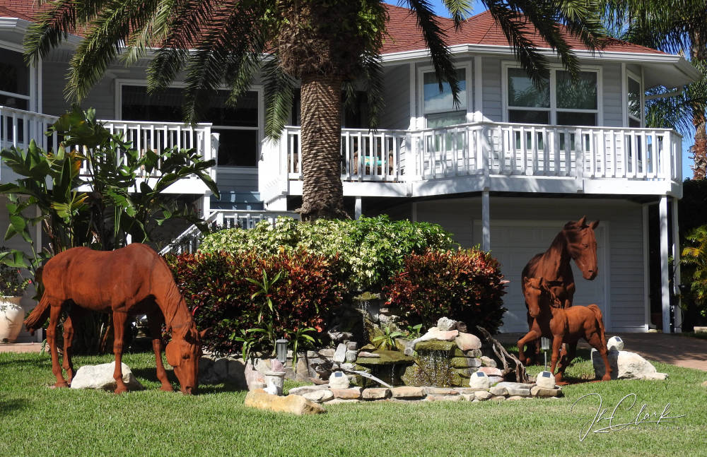 Hmmm, horses in front yard...