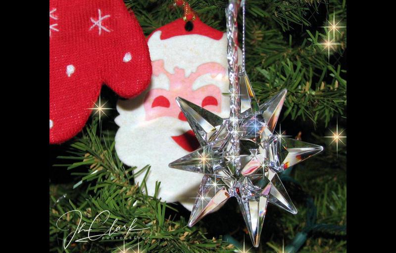 2012 Ornaments