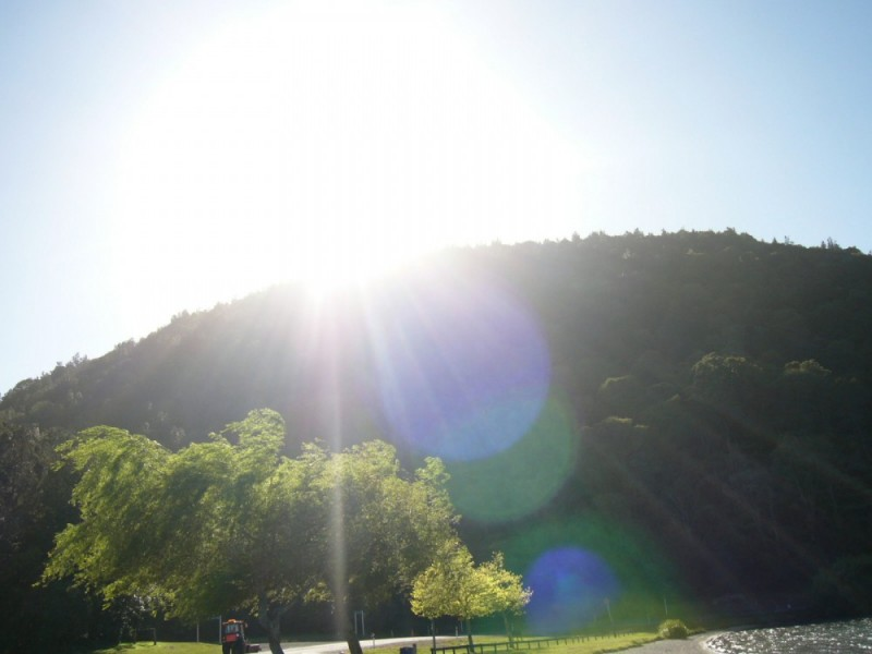 Sunlight!