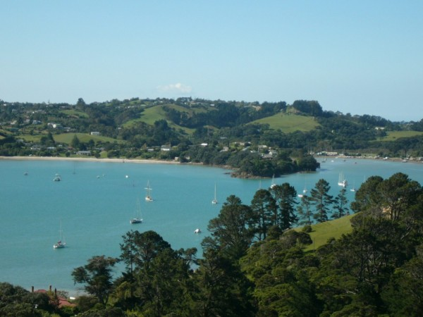 On a sunny day in Waiheke