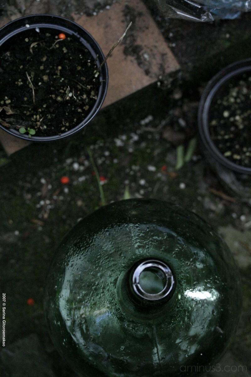 noni's garden bottles